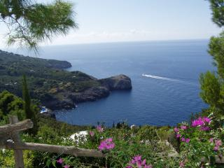 Spectacular sea views and big pool -  La Terrazza - Anacapri vacation rentals