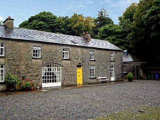 Nice House with Tennis Court and Television - Castlerea vacation rentals