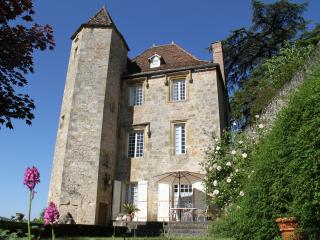 Renaissance Castle with private pool in the LOT, F - Touffailles vacation rentals