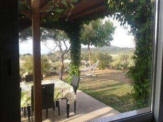 Adorable House with Freezer and Blender - Cargese vacation rentals