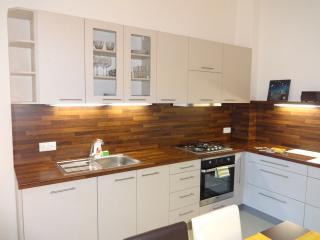 ☆ Large  2BDRM center Discount 8 p. DOWNTOWN - Prague vacation rentals