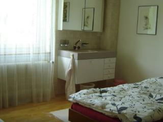 Vacation rentals in Canton of Basel