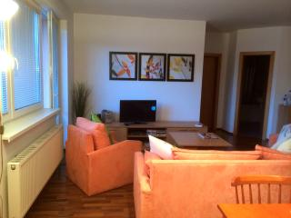 Modern Apartment in beautiful Liptovsky Mikulas - Liptovsky Mikulas vacation rentals