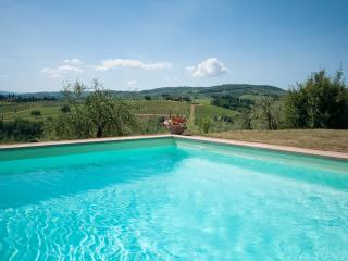 Montrogoli Chianti Holiday Home: private pool, Win - San Casciano in Val di Pesa vacation rentals
