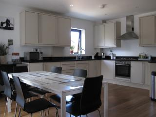Convenient 2 bedroom Buckhurst Hill Condo with Internet Access - Buckhurst Hill vacation rentals