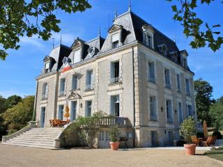 Bright 10 bedroom Haute-Vienne Chateau with Internet Access - Haute-Vienne vacation rentals