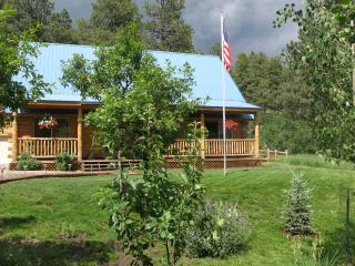Beautiful Colorado Cabin in Serene Setting - Bayfield vacation rentals