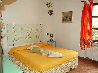 Gorgeous 1 bedroom Vacation Rental in Riparbella - Riparbella vacation rentals