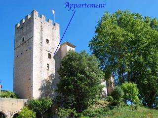 Château d'Esparron - Medieval Flat - Esparron de Verdon vacation rentals