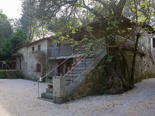 Quinta do Galgo (Forno) - Braga vacation rentals