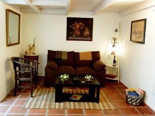 Charming loft apartment in Estados Unidos and Defensa st - San Telmo (225ST) - Buenos Aires vacation rentals
