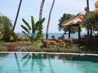Nice Villa with Internet Access and A/C - Lovina vacation rentals