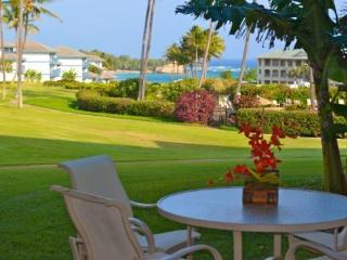Free Car* with Poipu Sands 115 - Immaculate and beautifully remodeled 1 bedroom, OCEAN VIEW, in Poipu - Poipu vacation rentals