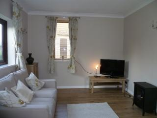Lovely Cambridge Apartment rental with Satellite Or Cable TV - Cambridge vacation rentals