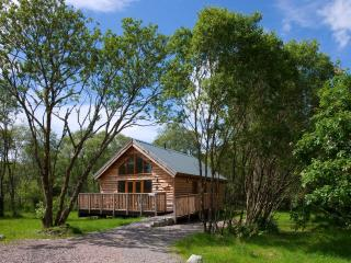 Silver Birch Log Cabin, with wood fired hot tub - Loch Awe vacation rentals