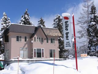 Sunny Falcon Ridge House sleeps 12! - Hakuba-mura vacation rentals