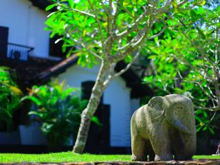 Galle Henna Estate - Book Whole Villa or By Room - Galle vacation rentals