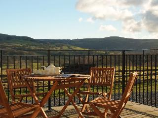 Newly converted eco barn with spectacular views - Lampeter vacation rentals
