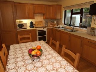 Nice House with Internet Access and Dishwasher - Harlech vacation rentals