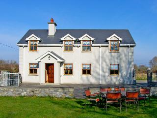4 bedroom House with Television in Callan - Callan vacation rentals