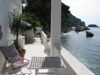 Magnificent French Riviera villa in Eze, features sea view, private swimming pool and garden - Eze vacation rentals