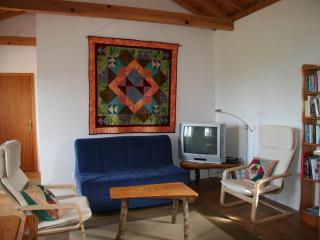 Nice House with Internet Access and Toaster - Cedros vacation rentals