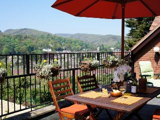 1 bedroom Condo with Deck in Church Stretton - Church Stretton vacation rentals