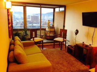 Temuco Apartamento Araucania Chile - Temuco vacation rentals