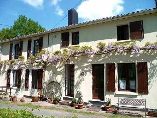 Lovely House with Internet Access and Satellite Or Cable TV - Vernoux-en-Gatine vacation rentals