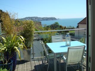Sunnymead - Paignton vacation rentals