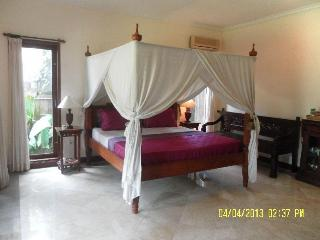 Luxury Private Room Pool, fibre WIFI, Garden Sanur - Sanur vacation rentals