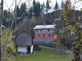 3 bedroom House with Internet Access in Bled - Bled vacation rentals