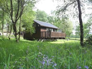 Beautiful 2 bedroom Cabin in Loch Awe - Loch Awe vacation rentals