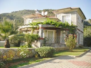 Ellynn Luxury Villa,Ideal for restricted mobility - Yesiluzumlu vacation rentals