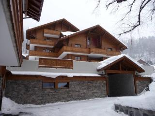 Luxury Apartment Alpes Champery - Champéry vacation rentals