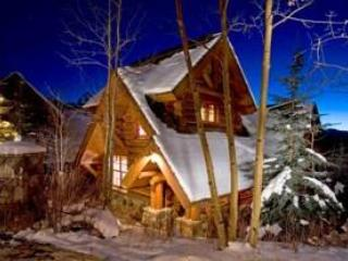 See Forever Cabin - Image 1 - Mountain Village - rentals