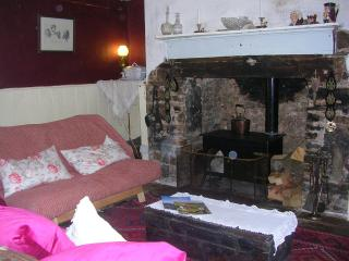 Nice Guest house with Internet Access and Central Heating - Brilley vacation rentals