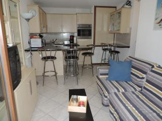 2 bedroom Apartment with Dishwasher in Les Carroz-d'Araches - Les Carroz-d'Araches vacation rentals