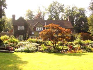 Lovely 1 bedroom Apartment in Dorking with Internet Access - Dorking vacation rentals