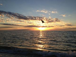 Beachy Cottage Less than 1 mi. to Vanderbilt Beach - Naples vacation rentals