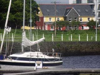 Beautiful Condo with Internet Access and Television - Kilrush vacation rentals