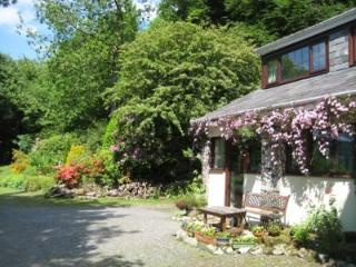 Kilsby Cottage - Llanwrtyd Wells vacation rentals