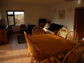 Bright 2 bedroom Gort House with Internet Access - Gort vacation rentals