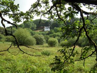 Farthings Hook Mill Cottage 4* - Pembrokeshire vacation rentals