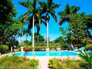 Blue Waters - Ocho Rios 4 Bedroom - Ocho Rios vacation rentals