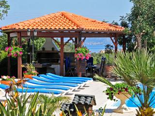 Villa Chariklia - Steni vacation rentals