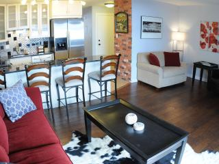New Modern Trendy Mountain Retreat - Dillon vacation rentals
