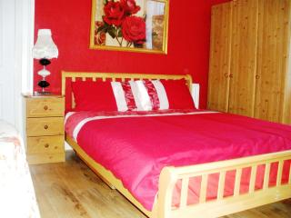 A spacious central double room - County Dublin vacation rentals