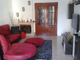Rest with sympathy and confort - Leiria vacation rentals