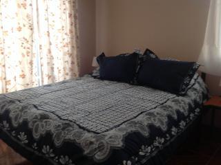 Möblerat hus i La Reina, Santiago de Chile - Santiago vacation rentals
